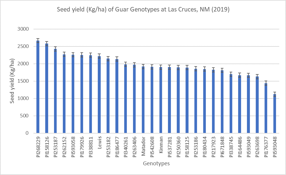 Guar genotype seed yield at Fabian Garcia Plant Science Center, Las Cruces, NM (2019)