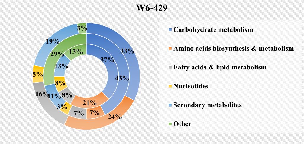 Guayule W6-429 Metabolome