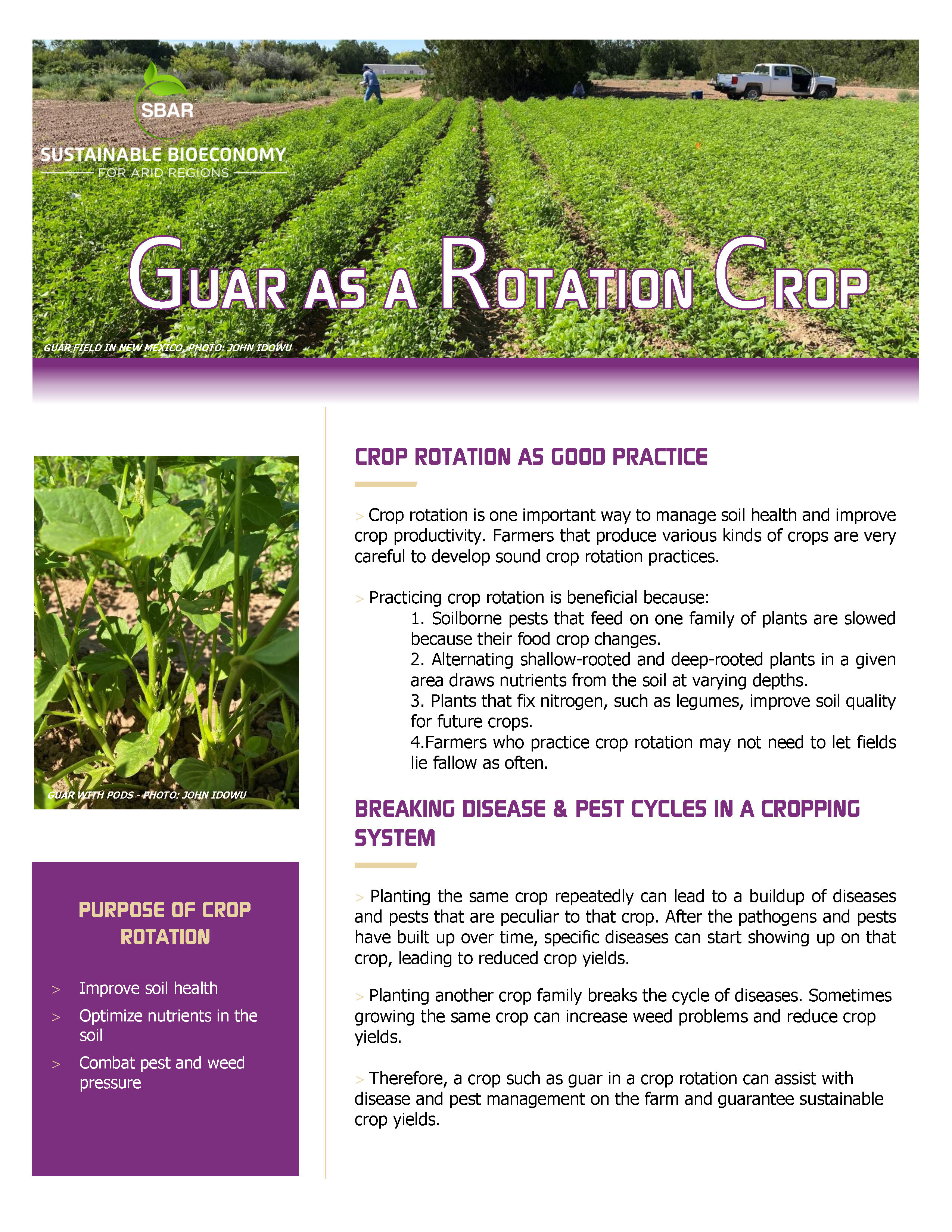 SBAR Fact Sheet Guar as a Rotation Crop cover page
