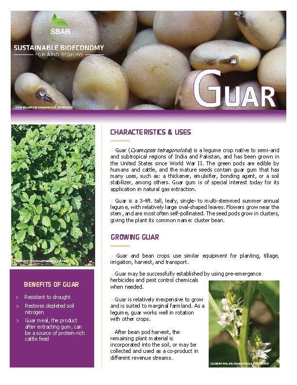 Guar Fact Sheet