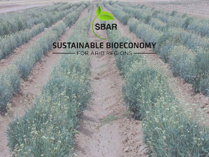 SBAR 2018 cover slide
