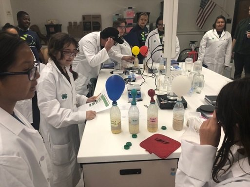 Students explore bioenergy concepts in the laboratory