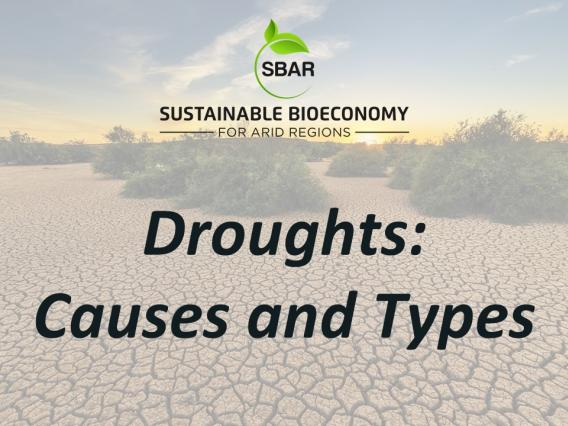 Droughts Causes and Types Title Slide