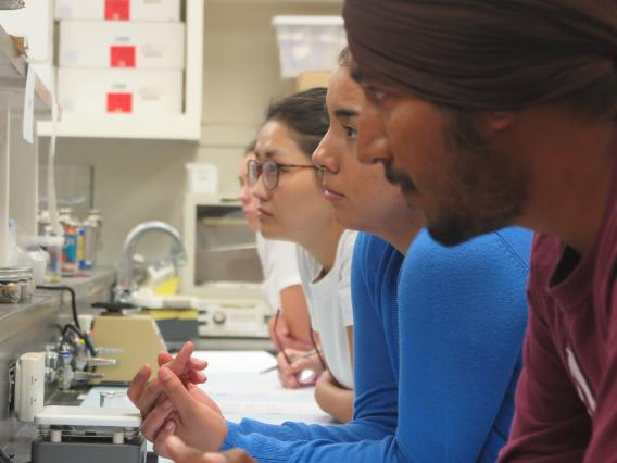 SBAR Graduate Fellows participate in hands on science experiments in New Mexico