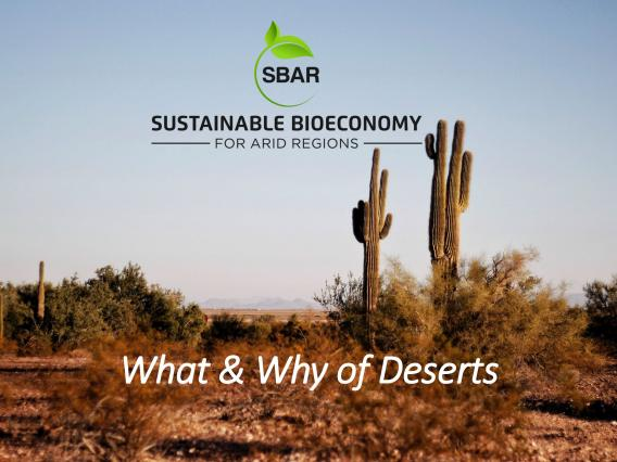 What and Why of Deserts lesson plan